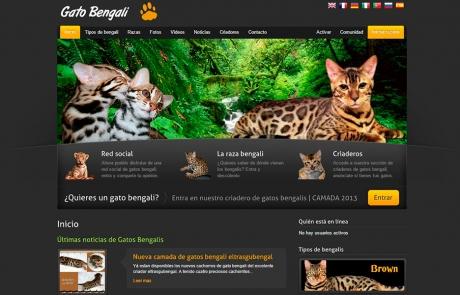 Gatos Bengalí